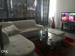 Clean and beautiful Room & beautiful lounge Area for Rent