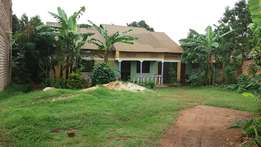 This house is for sale in seeta on namugongo road