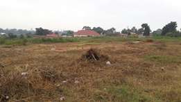 50*100ft plots in mukono town
