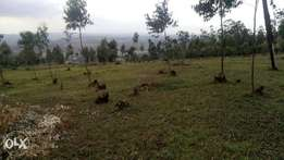 1/8 acre plots on sale in Ngong Kibiko (Tarmac)