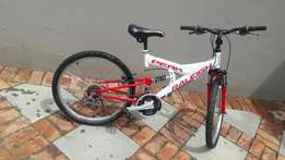Raleigh bike 24 inch with a free helmet