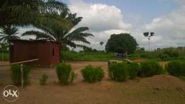 2 Plots of Land for Sale at affordable price