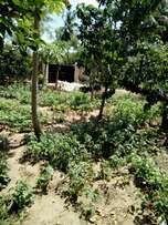 For sale,1.5acres shamba with,farm house of 3bedrooms,poultry farm,3 d