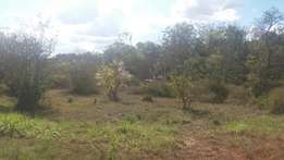 Thika Town Plots-Chania