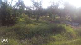 50 by 100m plots for sale behind mtwapa mall