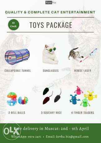 Cat Toys Package: 6 Types of Toys