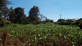 1/2 Acre Plot for sale