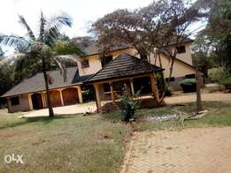 5 bedroom Mainsonnette to let in Karen Hardy Nairobi