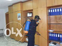 Reliable fumigation and cleaning service