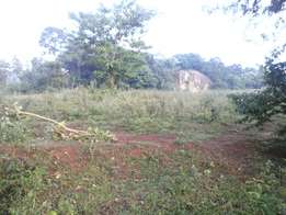 Prime land 50*100 in muskoma 20metres from bungoma mumias road...