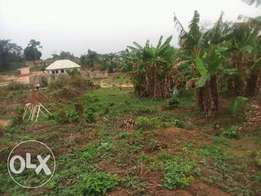 28 plot for land for sale