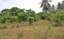 A 50 acre prime property 2nd row to the beach at Vipingo