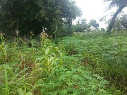 2 plots of land for sale in Awka
