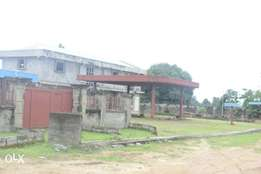 Carcass filling station 80% completed Size:(N520M)o