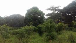 500 acres of land on sale found in katosi-mukono at 2m per acre