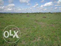 Prime land for sale kimana