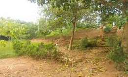 62 Hectares of land at karsana North for Sale.