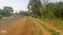 50 by 100 plot on tarmac at Makutano Kanduyi