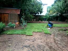 High quality instant lawn per m2 delivered and installed