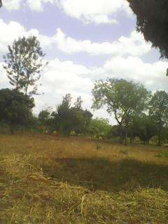 Sale of 2 and1/2 acres Rwika junctiom 6km from Embu town Embu Town - image 3