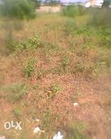 Problem free land for sale at Dodowa Odumse