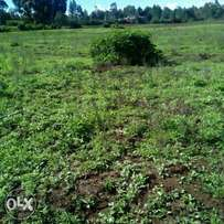 1 acre in Karanjee limuru