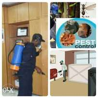 Expect Solutions for your Pest Problem