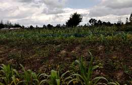 Agricultural land in Kinangop Located 7 Km From The Tarmac