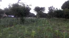 RAYO.3ACRES for sale kikambala near to road