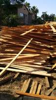 Timber Saligna Wood For Sale