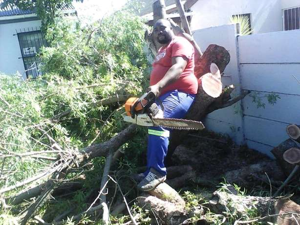 The bush clearing team Brackenfell - image 2