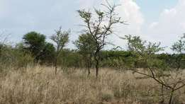 12.6 Hectares Land at Polokwane