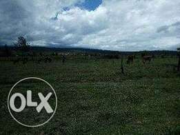2acre land in nanyuki airstrip