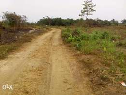 Plots of land for sale at the new airport road rumuagholu - N4.5m