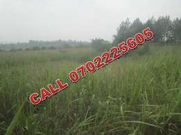 Strategic acre for sale in Sonde-Kasayi at 40m