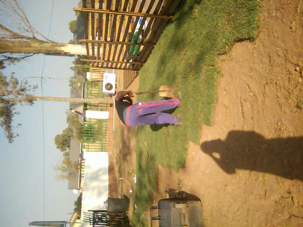 Lawn Installers And Landscapers Midrand - image 3