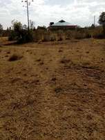 An1/8 plot for sale in merisho Rongai