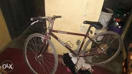 Clean new year bicycle sport
