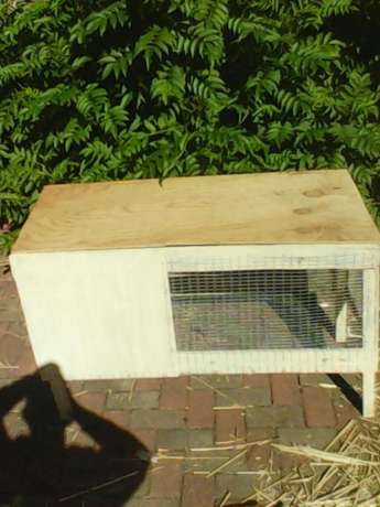 New rabbit cage for sale Brits - image 2