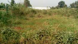 Plot for sale: 100 by 100 Kiamumbi area, Kamiti