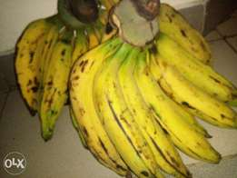 Dozen of Plantain Bananas