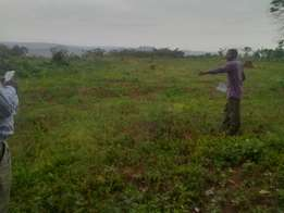 12 decimals plot for sale in busuka at a price of 25m.