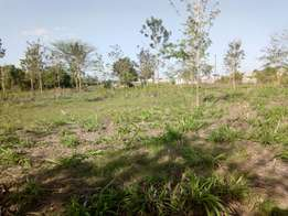 Prime plots 200m off eastern by-pass with clean title deed