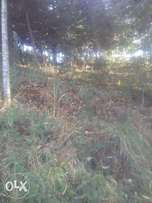 3/4 acre for sale gathaithi githaiti kiambu