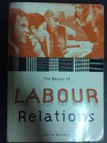 The Basic of Labour Relations. Sonia Bendix