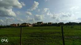 40 by 80 plot for sale in ruiru behind kamakis (2km from the bypass)