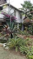 Comfort consult, 2brs Bungalow with beautiful garden and very secure