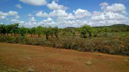 66 acres for sale past Ikutha town Kitui county