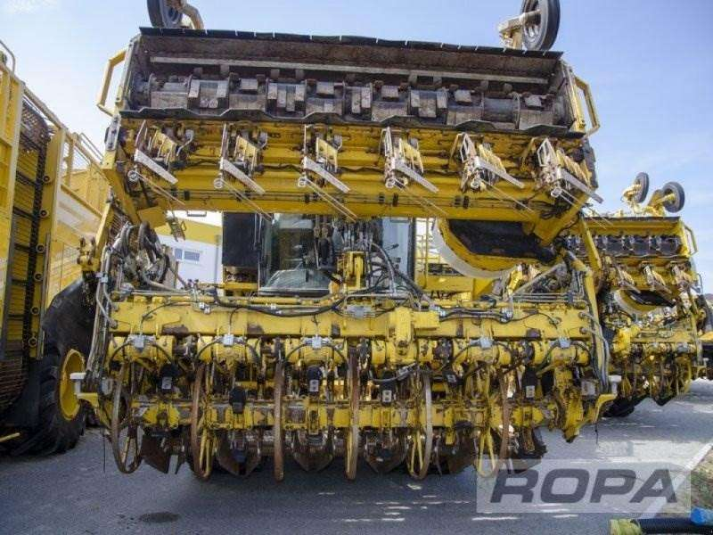 Ropa Euro-tiger V8-4b - 2012 - image 9
