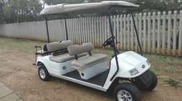 Golf cart and charger 6 seater
